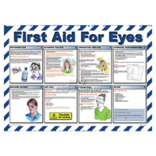 View Workplace Poster First Aid For Eyes details.